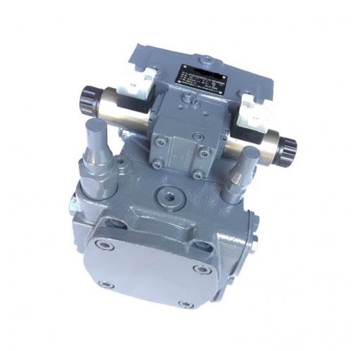 A10VG63 A10VG18 A10VG28 Rexroth Hydraulic Pump